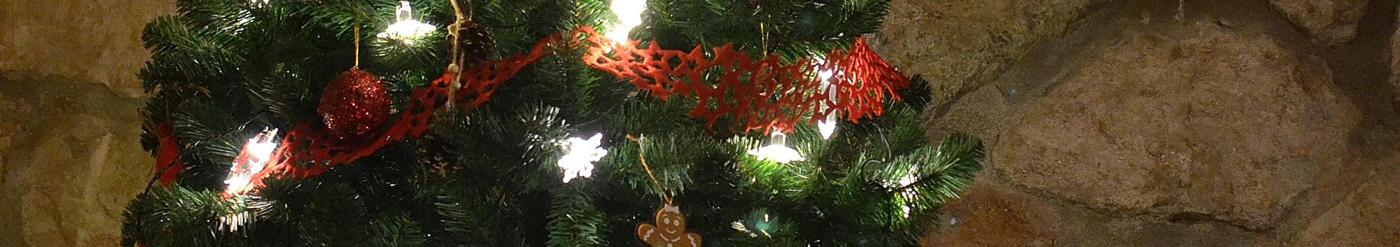 Tus Navidades en la Casa del Molí