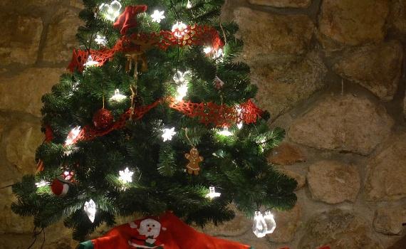 Christmas tree at la Casa del Mli