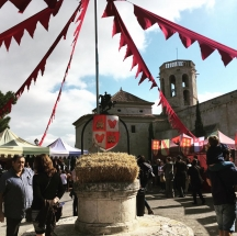 Fiesta Medieval Sant Martí